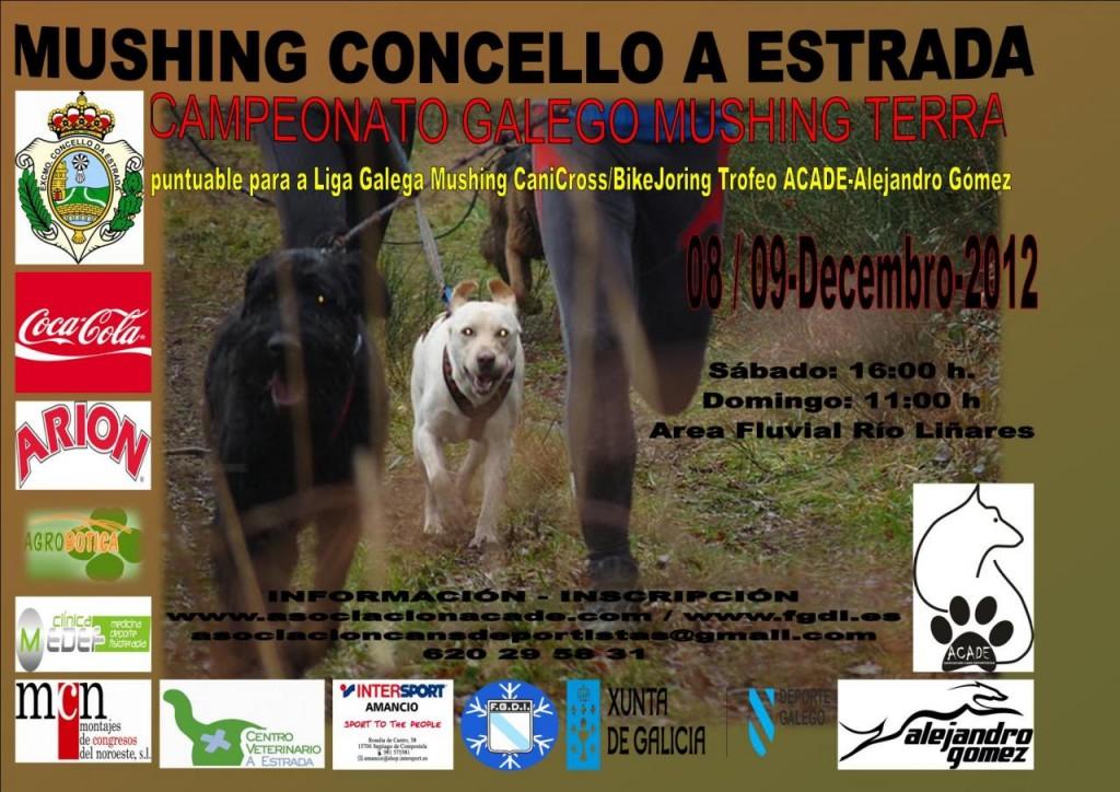 CartelCtoGalegoMushingTerra