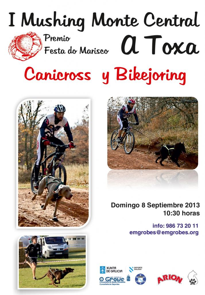Cartel_A_Toxa_13