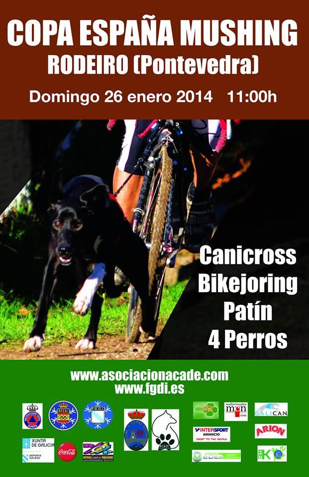 CartelRodeiro2014