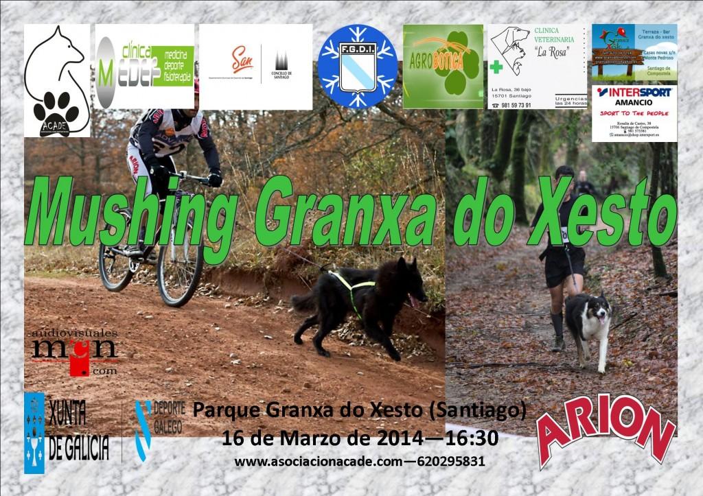 CartelSantiago14