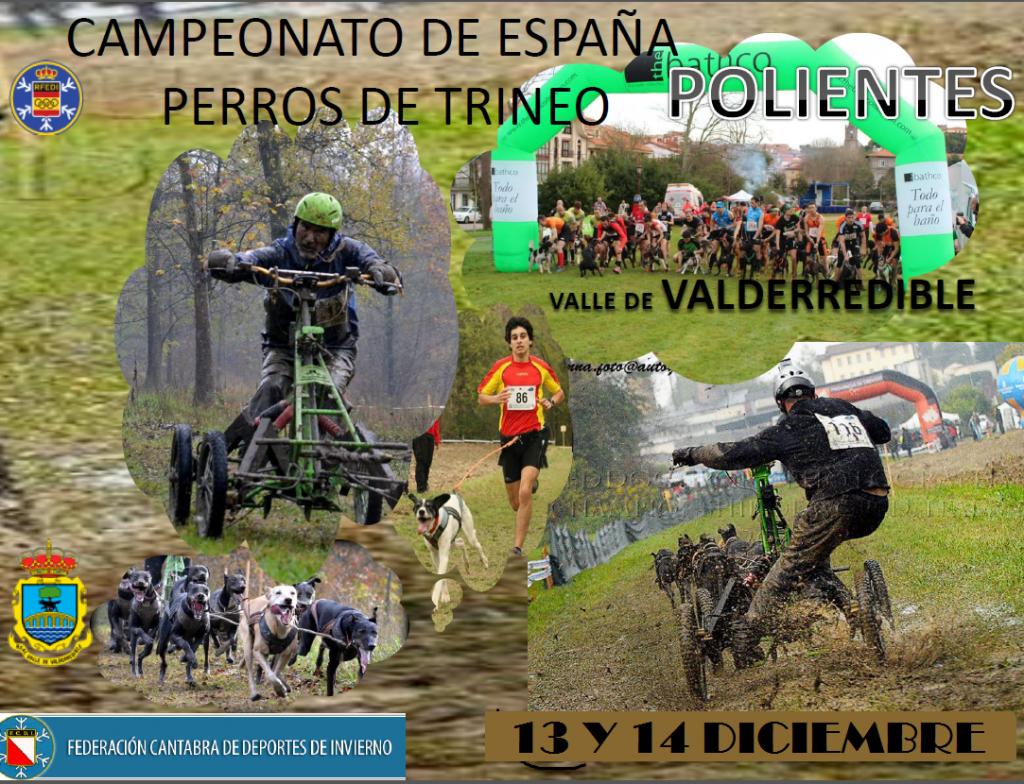 CtoEspañaMushingTerra2014
