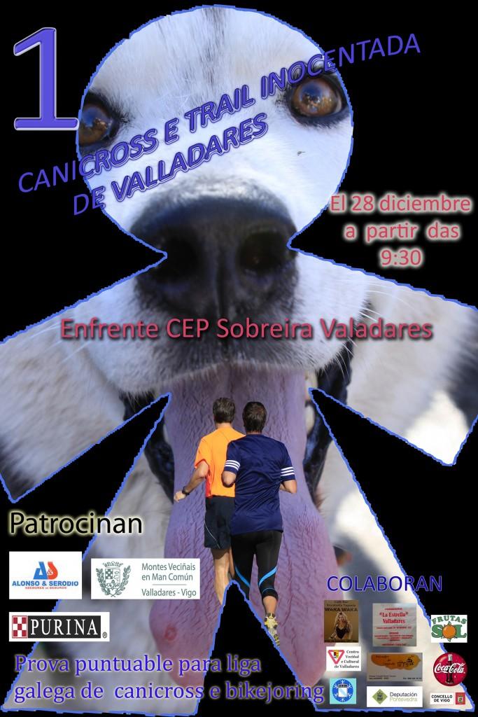 CartelValadares2014