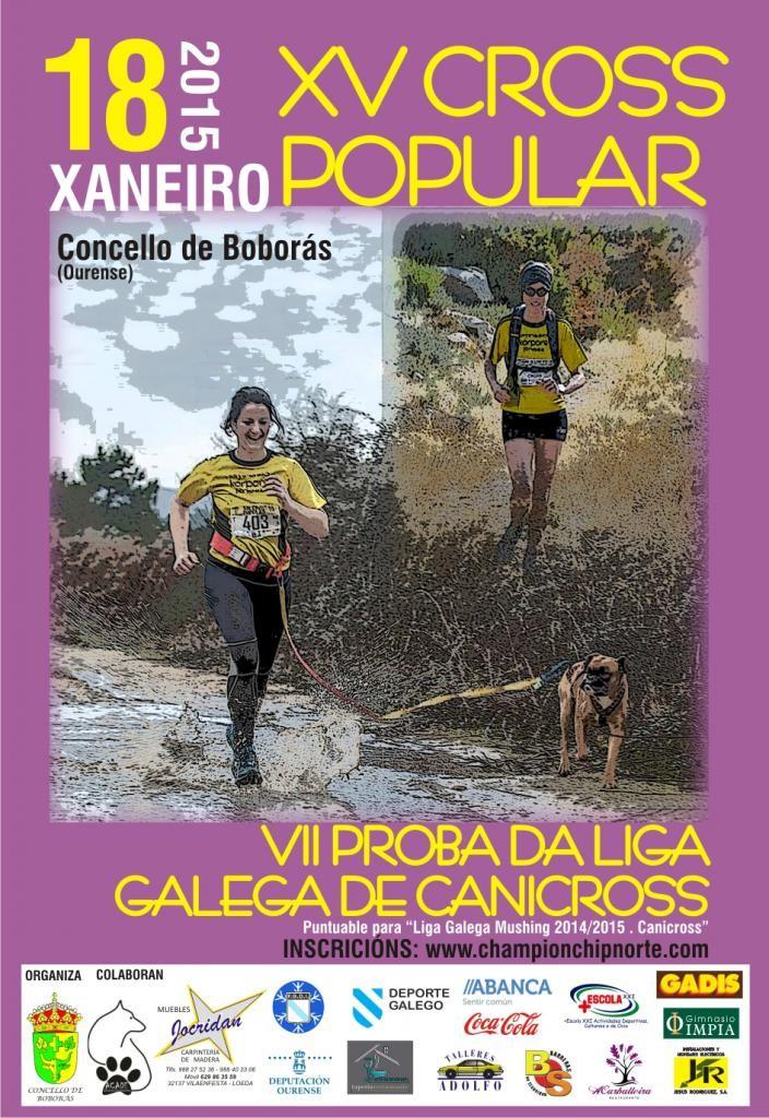 CartelBoboras2015